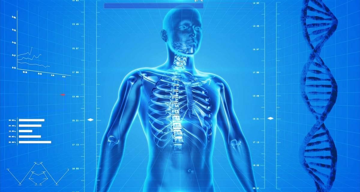 Каких частей тела человек лишится в будущем?