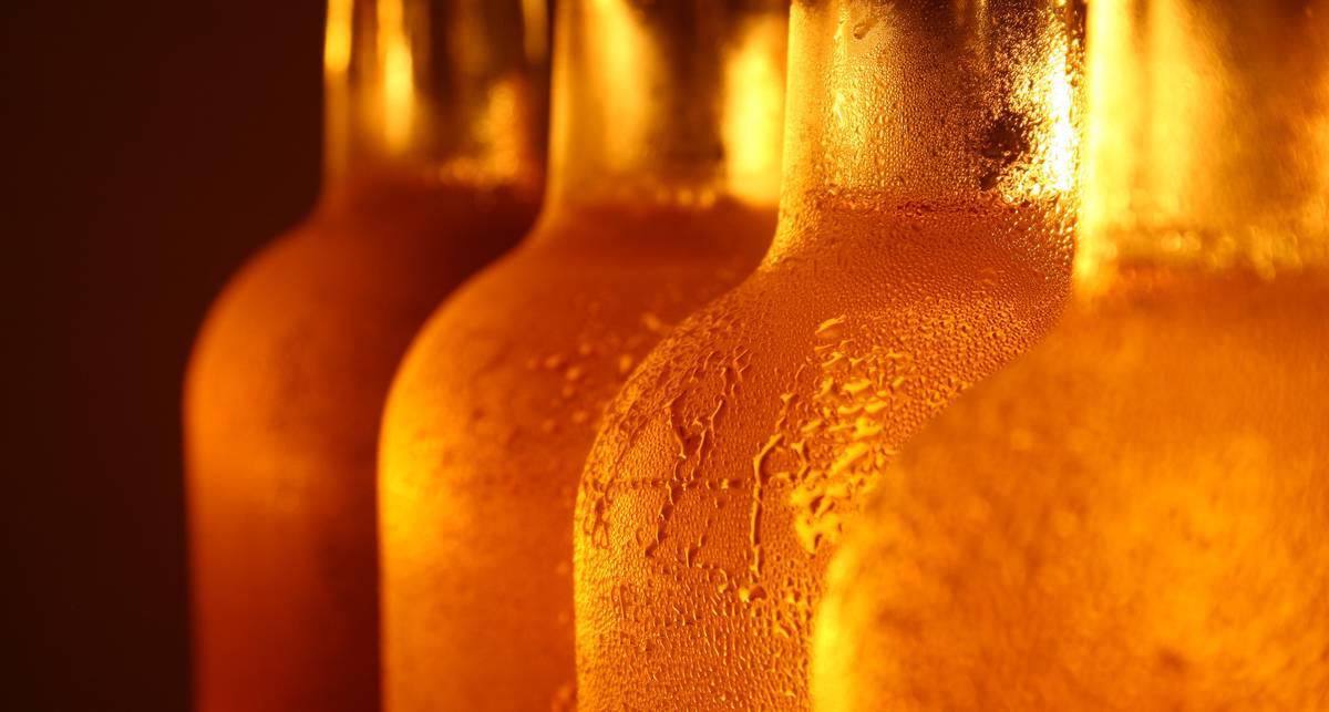 Свежесть без фильтра: как пить белое пиво