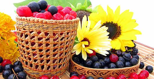 ТОП-8 самых полезных ягод этой осени