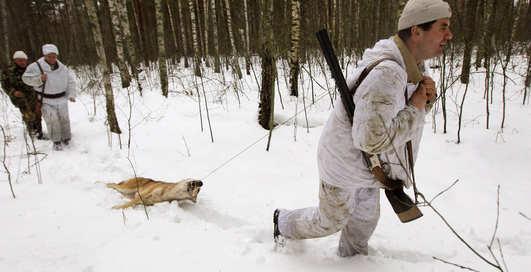 Как охотятся в Чернобыльской зоне