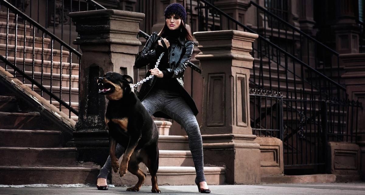 Эх, жизнь собачья: хозяйка насиловала ротвейлера