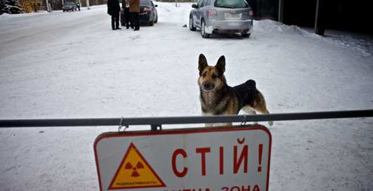 Чернобыль сегодня: прогулка по Зоне