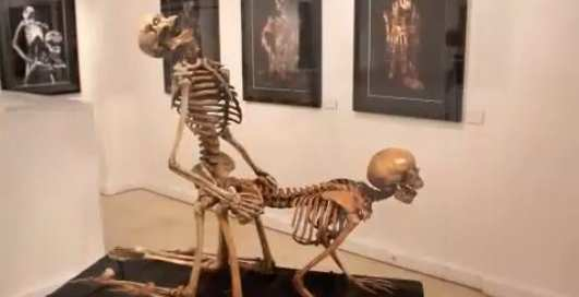 Минеты от скелета: костяная Камасутра
