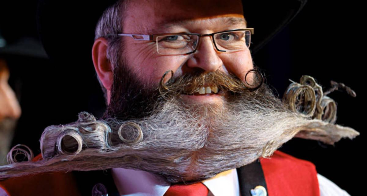 Лось под носом: борода ты немецкая!
