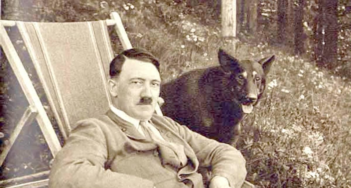 Шавки Гитлера: говорящие псы СС