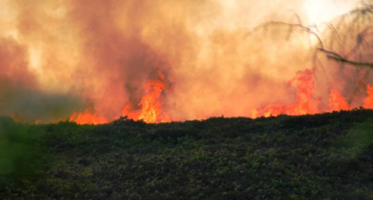 Исторический пожар: Аризона в огне