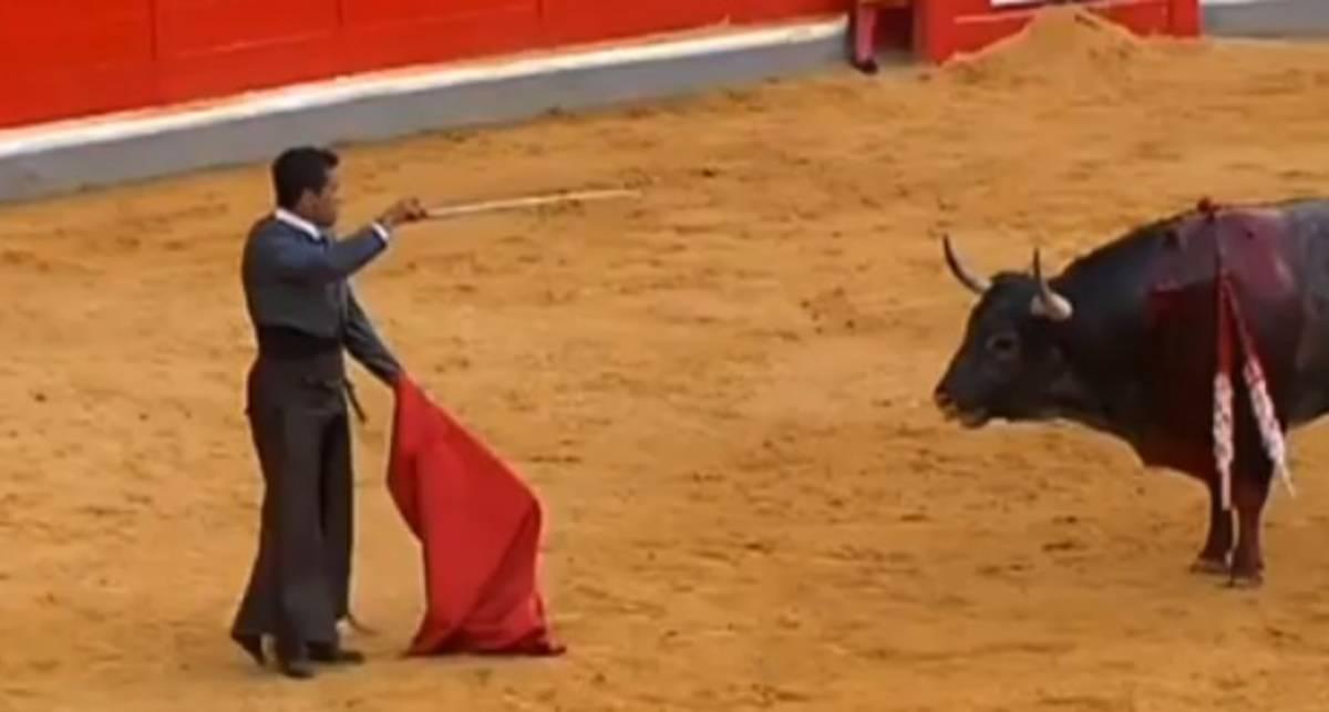 Рога победы: матадор получил под зад