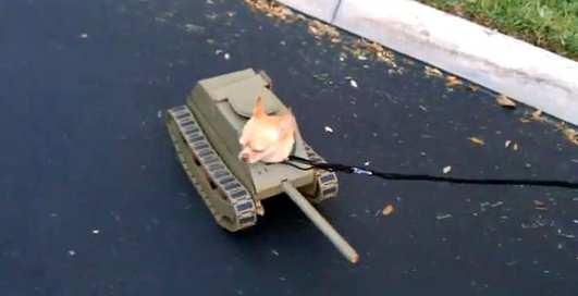 Танк будущего: железный пес НАТО