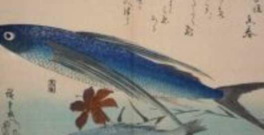 Китаец поймал рыбу за 500 тысяч долларов