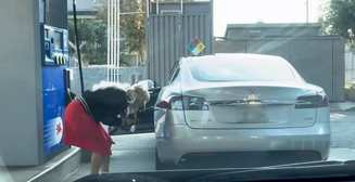 Сеть взорвало видео с блондинкой, которая пытается заправить Tesla Model бензином