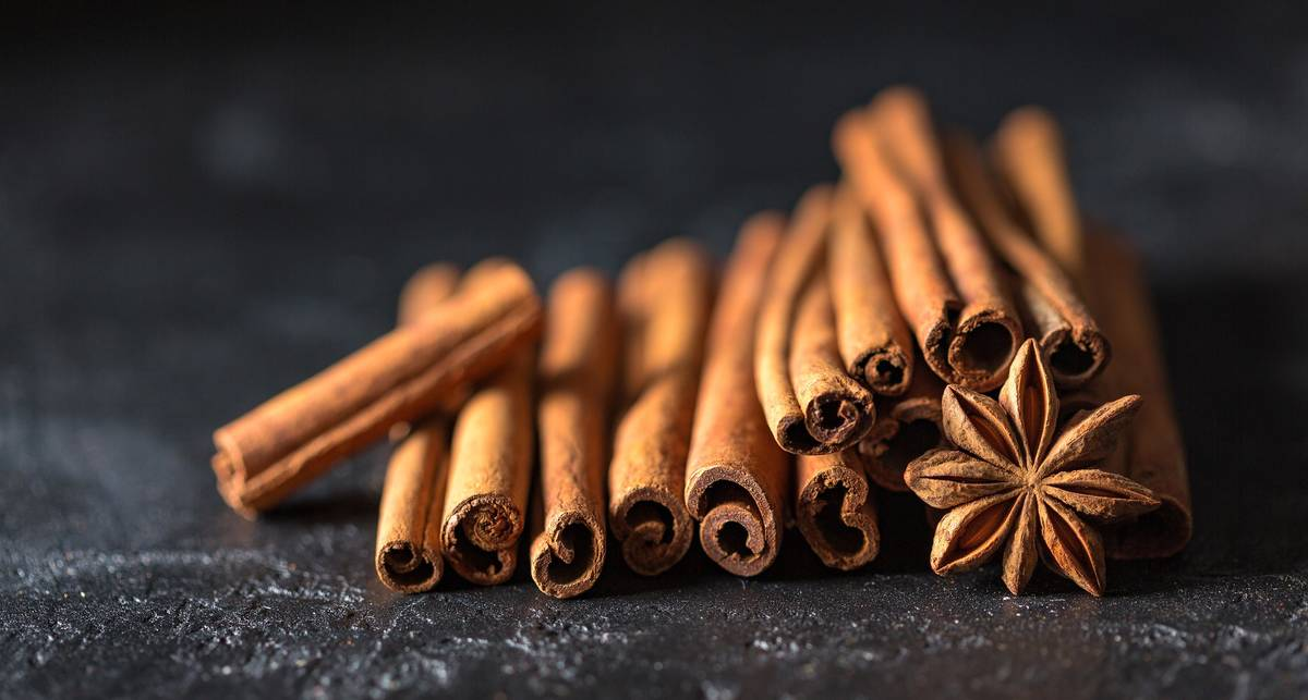 Универсальная сладость: топ-15 полезных свойств меда с корицей
