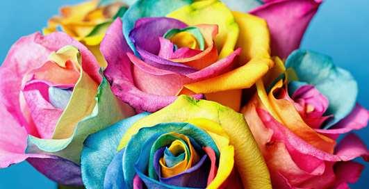 Как изменить цвет цветка в домашних условиях