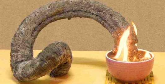 Как сделать дома фараонову змею