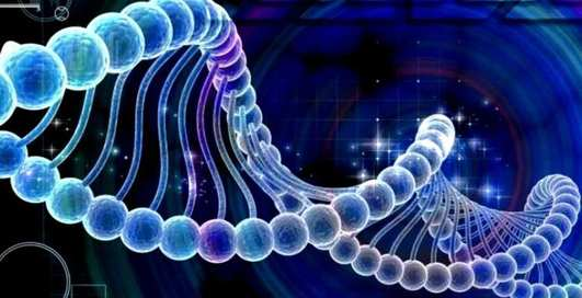 Богатство на генном уровне: ученые нашли зависимость между ДНК и состоятельностью